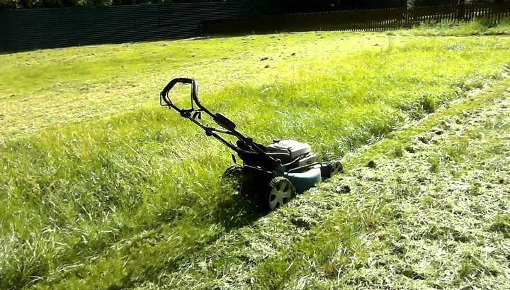 Параметры участка при выборе газонокосилки