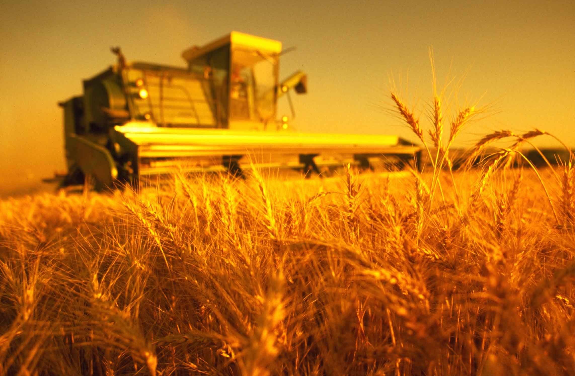 Ведение сельского хозяйства