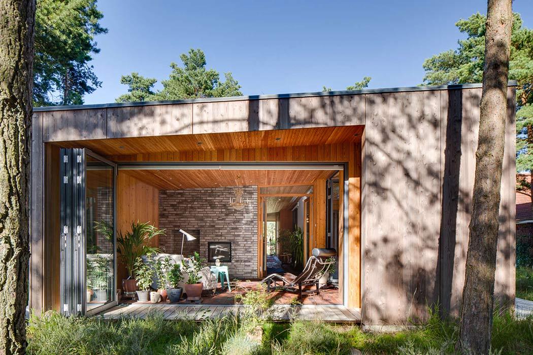 Дом для отдыха прячется в сосновых лесах Швеции