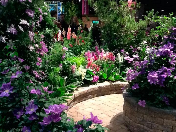 Сложная композиция в саду
