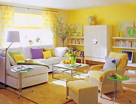 желтый и фиолетовый 21