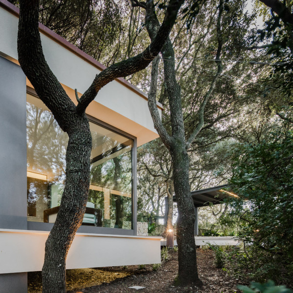 дом в лесах сассари5