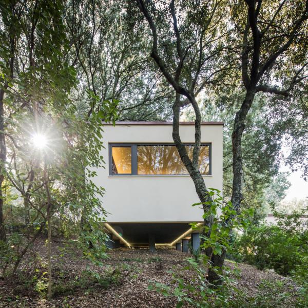 дом в лесах сассари6