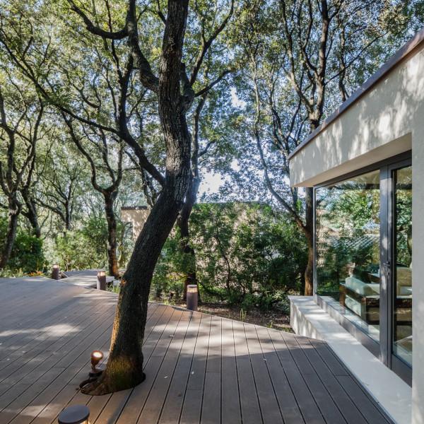 дом в лесах сассари8