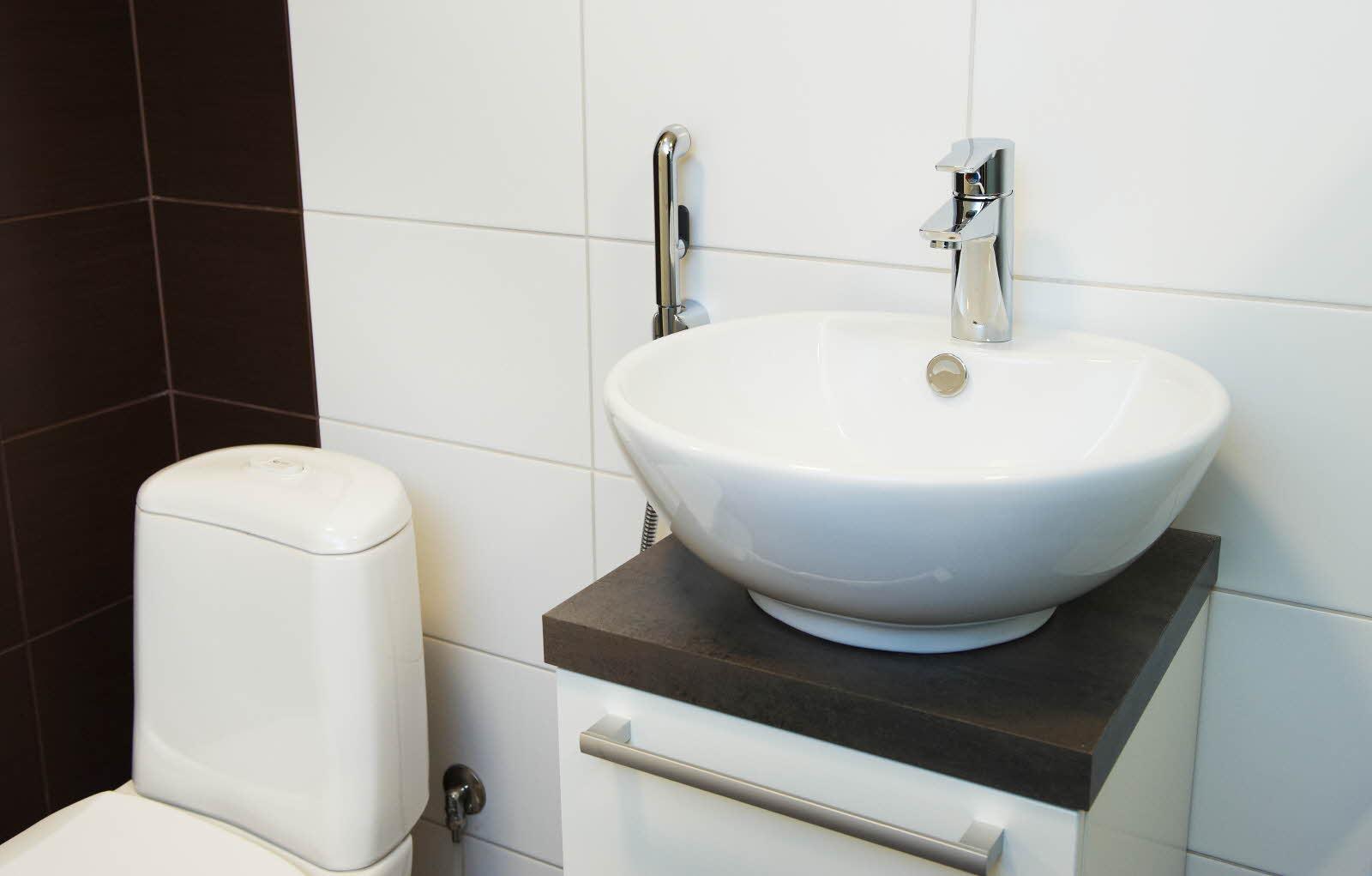 Встроенный в унитаз душ