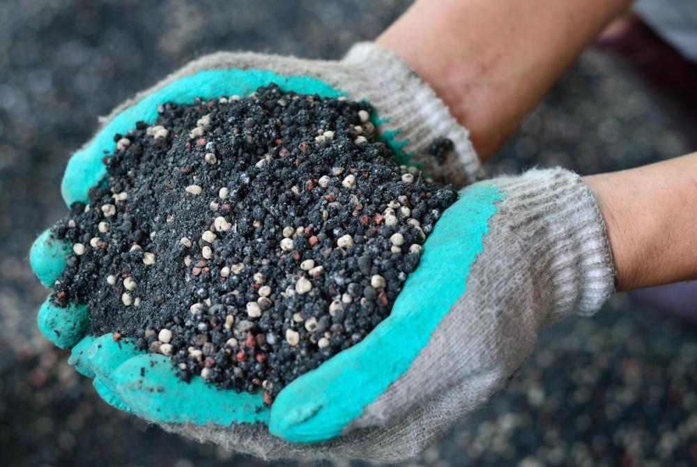 Подкормка клубники в период цветения минеральными удобрениями