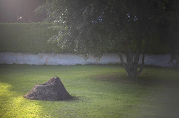 кресло из травы14