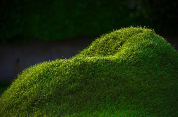 кресло из травы2