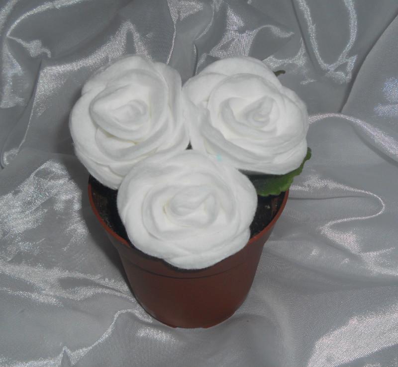 «Белые розы в горшочке»