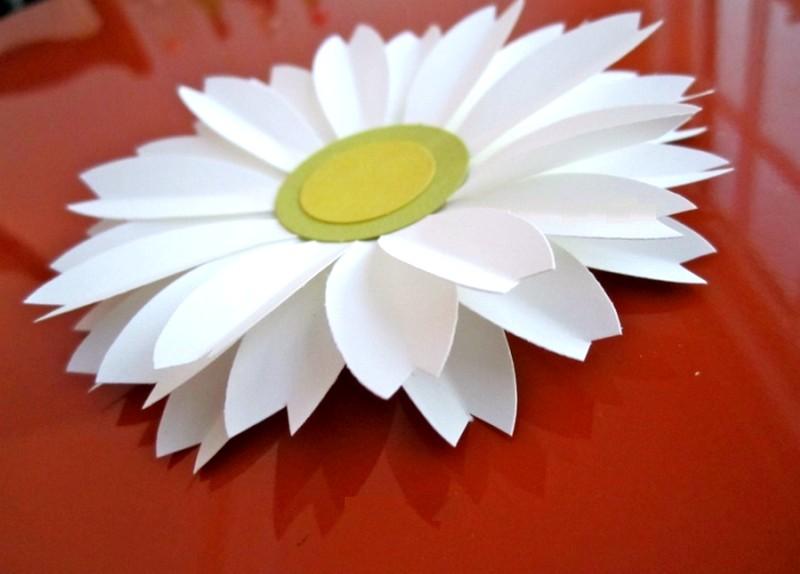 Цветы из цветной бумаги своими рукам ромашку
