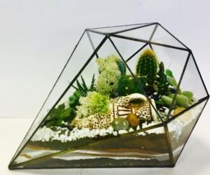 137d6d6ff6594a46097edbd059rt-tsvety-i-floristika-florarium-diamant-s-sukkulentami.jpg.pagespeed.ce_.HDTn8lh0ii