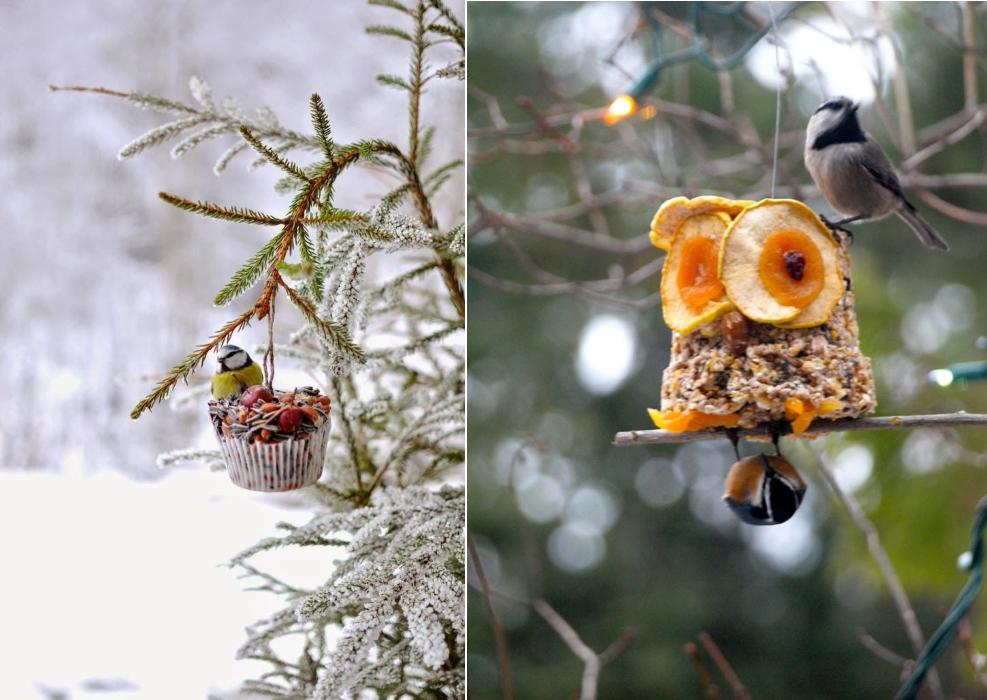 Вкусные угощения для птиц зимой