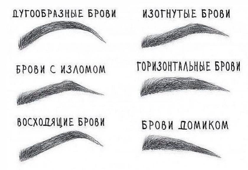 Типы бровей